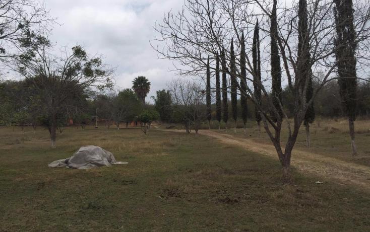 Foto de terreno habitacional en venta en  , el pastor, montemorelos, nuevo le?n, 1911830 No. 02