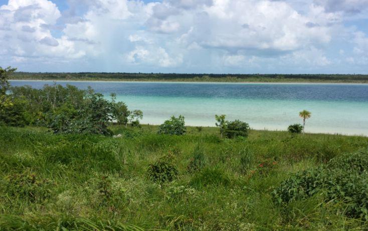 Foto de terreno comercial en venta en, el pedregal, bacalar, quintana roo, 1617184 no 02