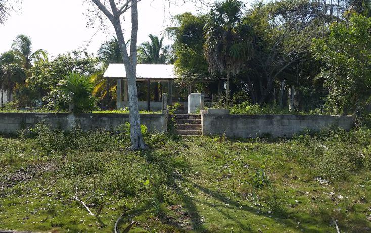 Foto de terreno habitacional en venta en, el pedregal, bacalar, quintana roo, 1829640 no 03