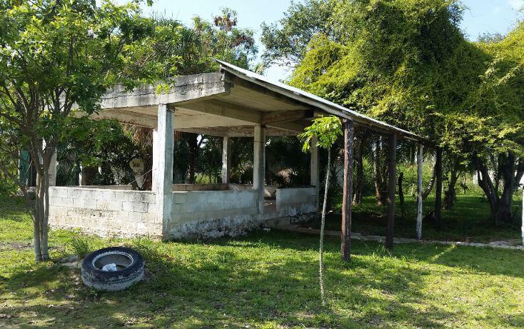 Foto de terreno habitacional en venta en, el pedregal, bacalar, quintana roo, 1829640 no 06