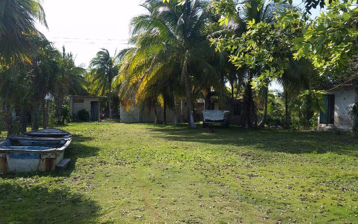 Foto de terreno habitacional en venta en, el pedregal, bacalar, quintana roo, 1829640 no 07