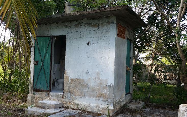 Foto de terreno habitacional en venta en, el pedregal, bacalar, quintana roo, 1829640 no 09