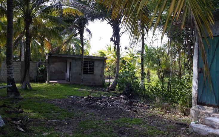 Foto de terreno habitacional en venta en, el pedregal, bacalar, quintana roo, 1829640 no 10