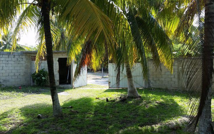 Foto de terreno habitacional en venta en, el pedregal, bacalar, quintana roo, 1829640 no 11