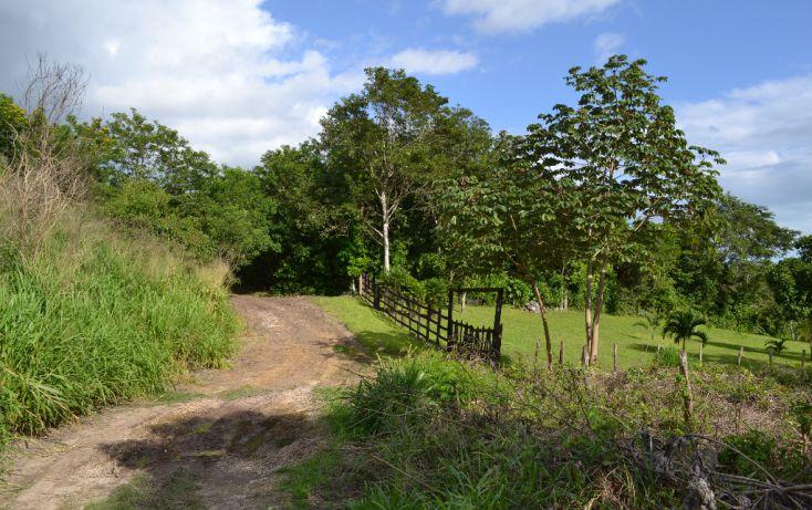 Foto de terreno comercial en venta en, el pedregal, bacalar, quintana roo, 2011574 no 02