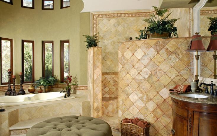 Foto de casa en renta en  , el pedregal, los cabos, baja california sur, 577954 No. 14