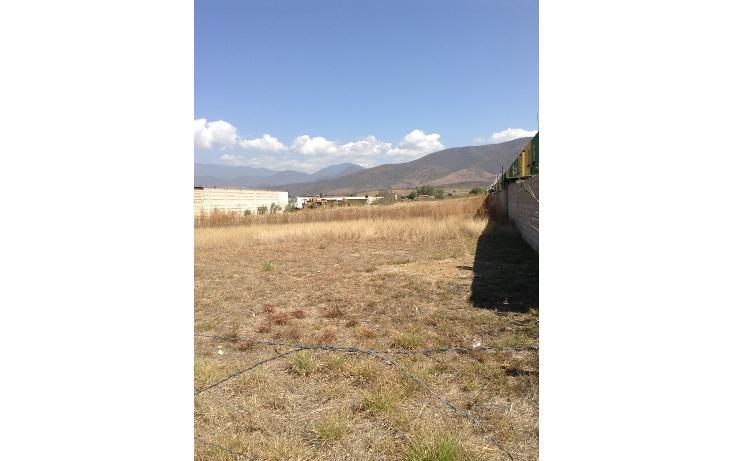 Foto de terreno habitacional en venta en  , el pedregal, san francisco lachigoló, oaxaca, 860821 No. 02