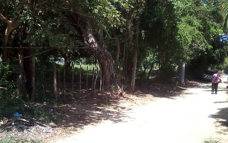 Foto de terreno habitacional en venta en  , el pedregoso, acapulco de juárez, guerrero, 1864000 No. 03