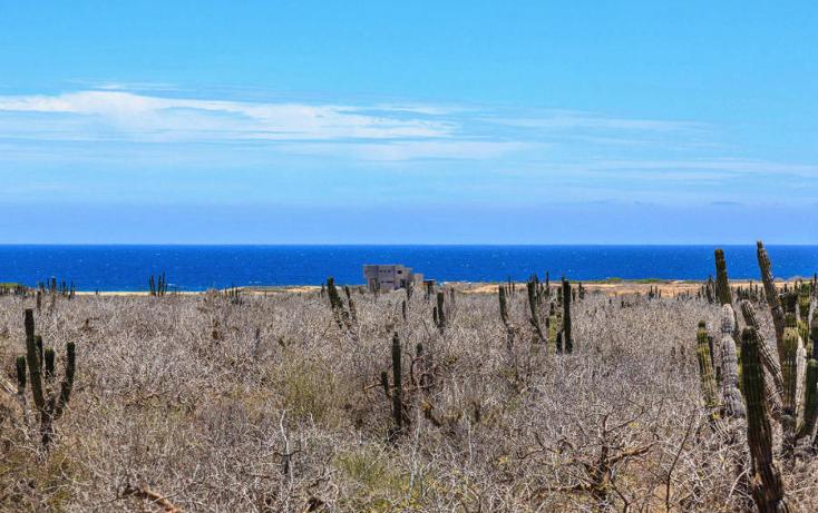 Foto de terreno habitacional en venta en  , el pescadero, la paz, baja california sur, 1064261 No. 06