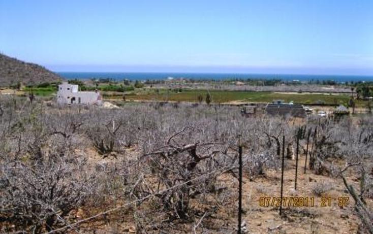 Foto de terreno habitacional en venta en  , el pescadero, la paz, baja california sur, 1089981 No. 03