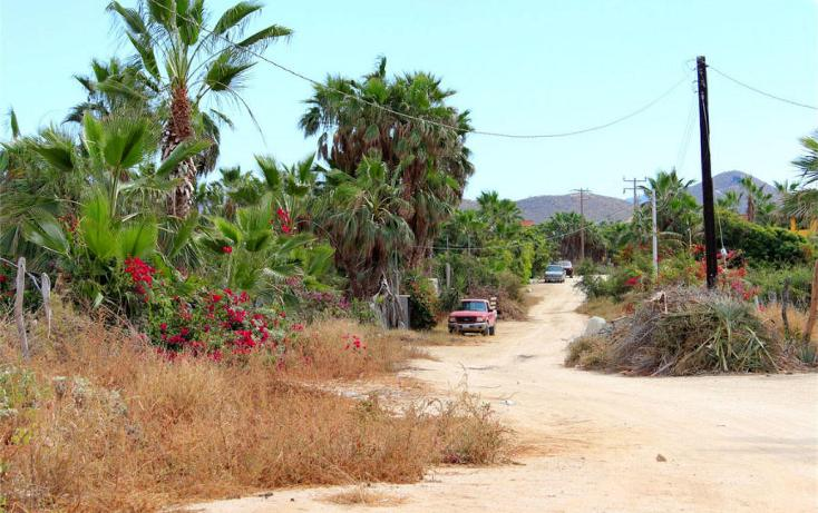 Foto de casa en venta en  , el pescadero, la paz, baja california sur, 1101431 No. 24