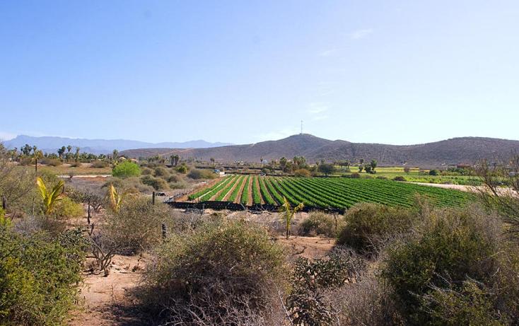 Foto de terreno habitacional en venta en  , el pescadero, la paz, baja california sur, 1112805 No. 01