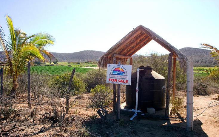 Foto de terreno habitacional en venta en  , el pescadero, la paz, baja california sur, 1112805 No. 09