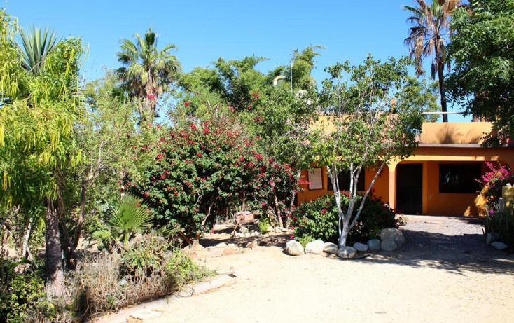 Foto de casa en venta en  , el pescadero, la paz, baja california sur, 1118275 No. 03