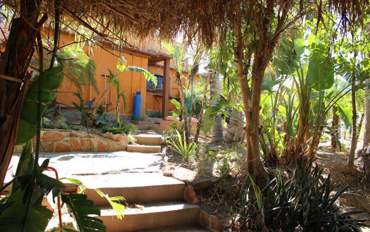Foto de casa en venta en  , el pescadero, la paz, baja california sur, 1118275 No. 05