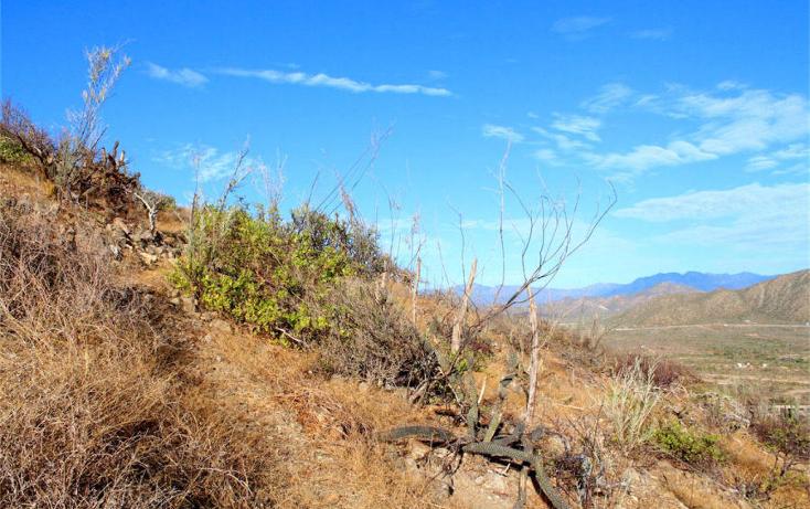 Foto de terreno habitacional en venta en  , el pescadero, la paz, baja california sur, 1132117 No. 11