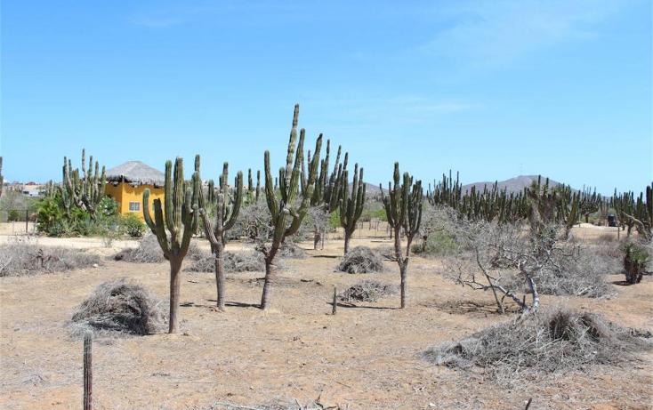 Foto de terreno habitacional en venta en  , el pescadero, la paz, baja california sur, 1196305 No. 04