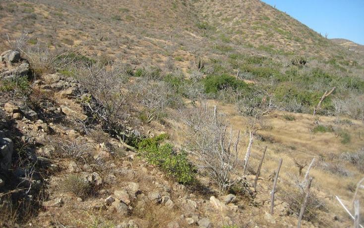 Foto de terreno habitacional en venta en  , el pescadero, la paz, baja california sur, 1209163 No. 14