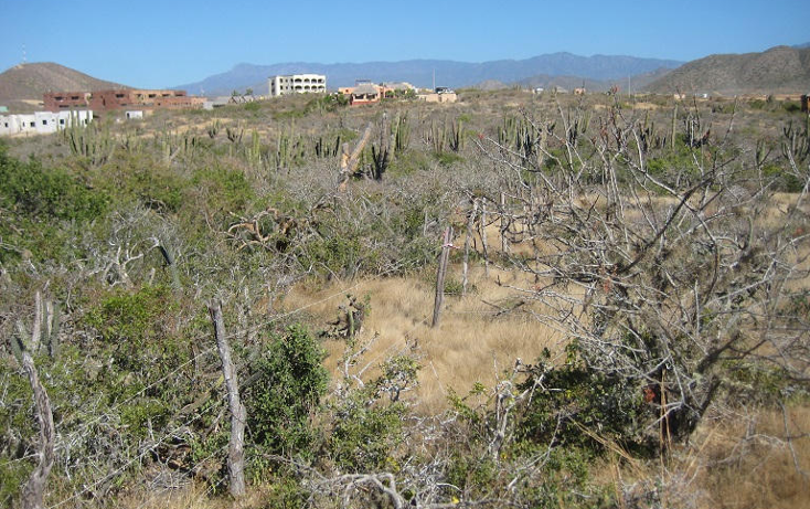 Foto de terreno habitacional en venta en  , el pescadero, la paz, baja california sur, 1209163 No. 15