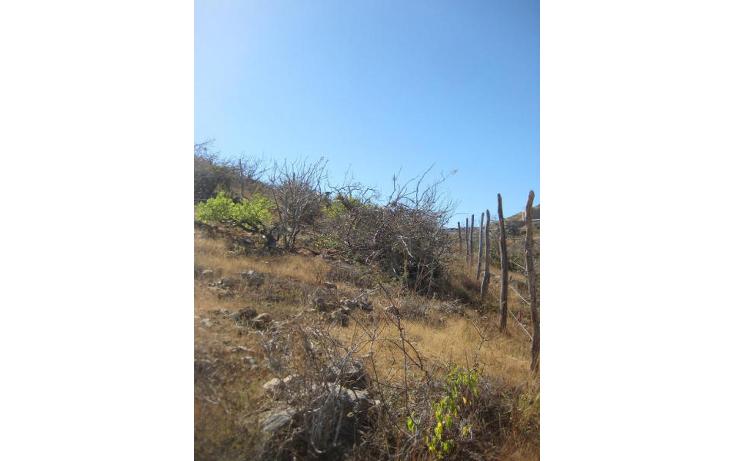Foto de terreno habitacional en venta en  , el pescadero, la paz, baja california sur, 1209163 No. 18