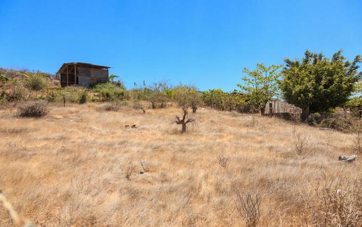Foto de terreno habitacional en venta en  , el pescadero, la paz, baja california sur, 1248519 No. 03