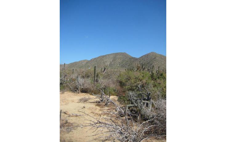 Foto de terreno habitacional en venta en  , el pescadero, la paz, baja california sur, 1254273 No. 03