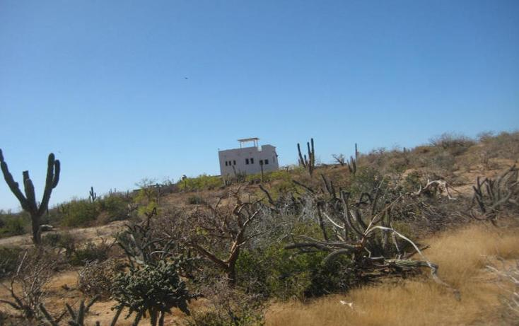 Foto de terreno habitacional en venta en  , el pescadero, la paz, baja california sur, 1254273 No. 13