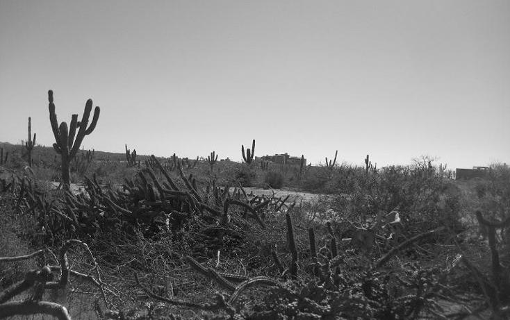 Foto de terreno habitacional en venta en  , el pescadero, la paz, baja california sur, 1254273 No. 25