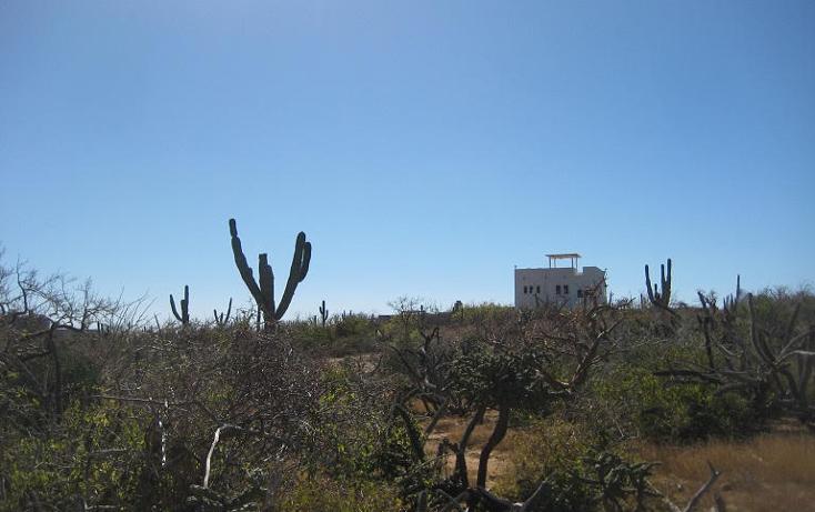 Foto de terreno habitacional en venta en  , el pescadero, la paz, baja california sur, 1254273 No. 26