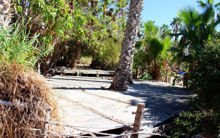 Foto de terreno habitacional en venta en  , el pescadero, la paz, baja california sur, 1273465 No. 17
