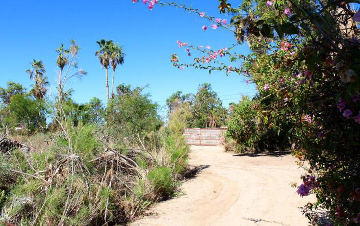 Foto de terreno habitacional en venta en  , el pescadero, la paz, baja california sur, 1273465 No. 19