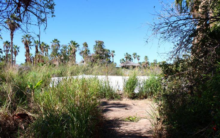 Foto de terreno habitacional en venta en  , el pescadero, la paz, baja california sur, 1273465 No. 20