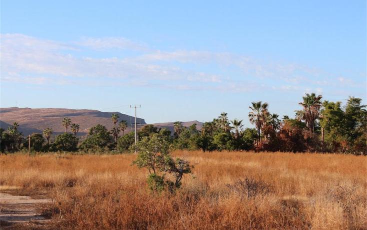 Foto de terreno habitacional en venta en  , el pescadero, la paz, baja california sur, 1276055 No. 04