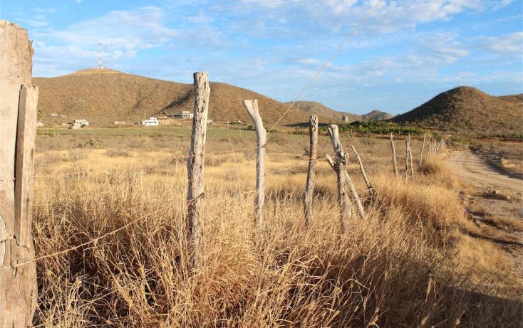 Foto de terreno habitacional en venta en  , el pescadero, la paz, baja california sur, 1276055 No. 10