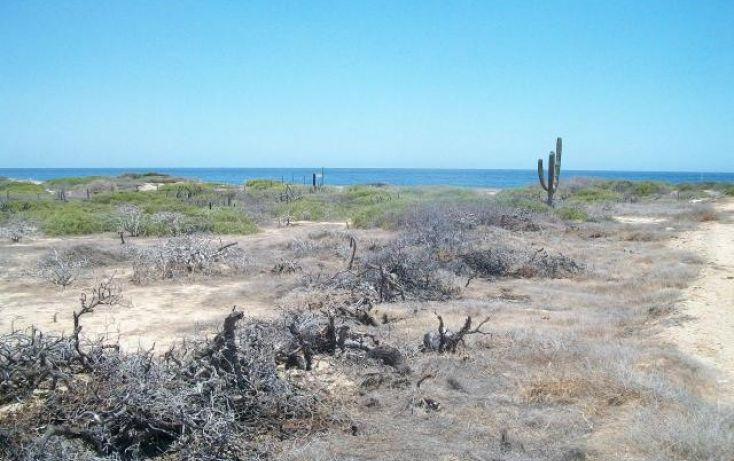 Foto de terreno habitacional en venta en, el pescadero, la paz, baja california sur, 1289517 no 05