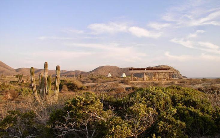 Foto de terreno habitacional en venta en  , el pescadero, la paz, baja california sur, 1750454 No. 05