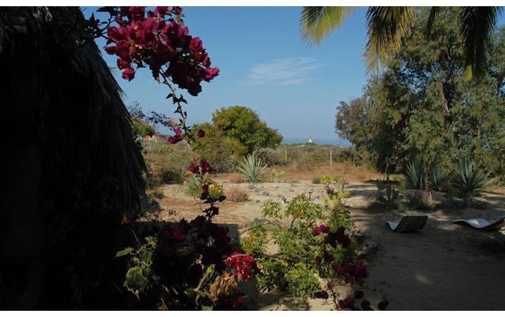 Foto de terreno habitacional en venta en  , el pescadero, la paz, baja california sur, 1750454 No. 07