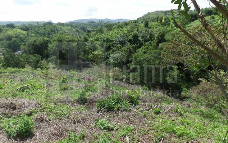 Foto de terreno habitacional en venta en  , el pich?n, tepic, nayarit, 1236859 No. 02
