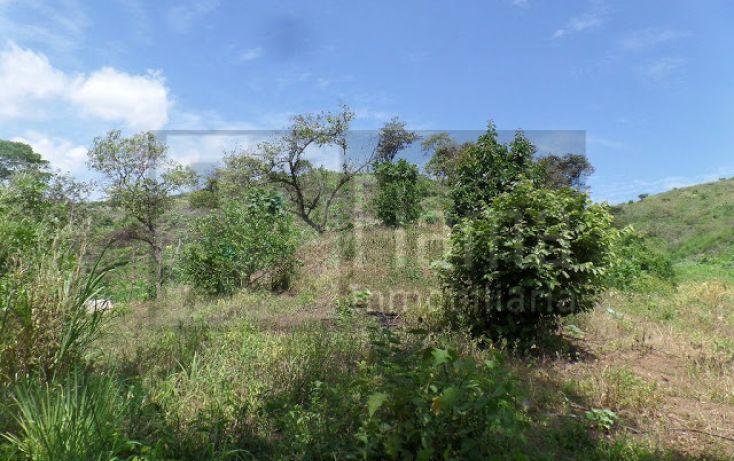 Foto de terreno habitacional en venta en, el pichón, tepic, nayarit, 1236859 no 03