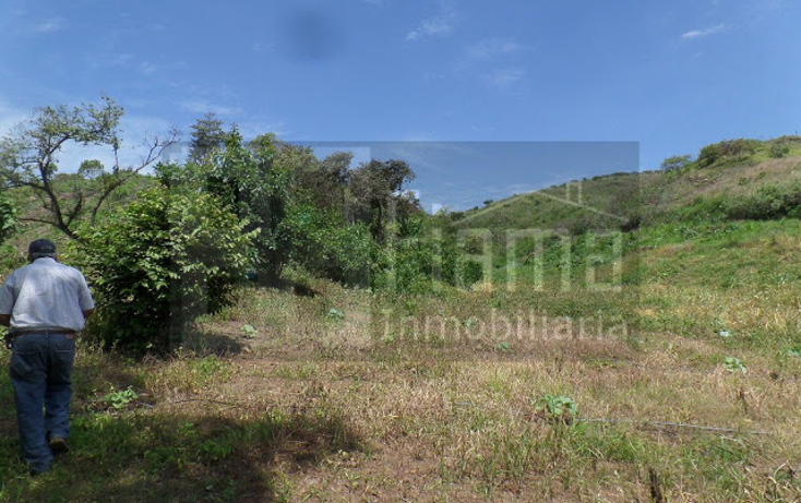 Foto de terreno habitacional en venta en  , el pich?n, tepic, nayarit, 1236859 No. 04