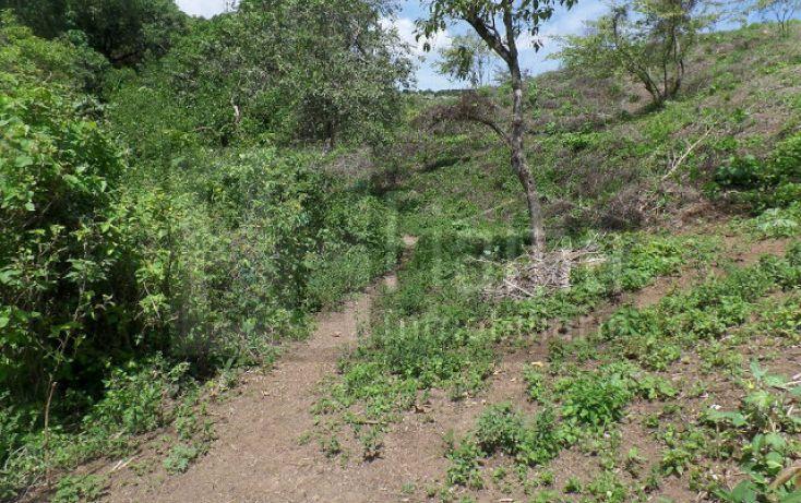 Foto de terreno habitacional en venta en, el pichón, tepic, nayarit, 1236859 no 05