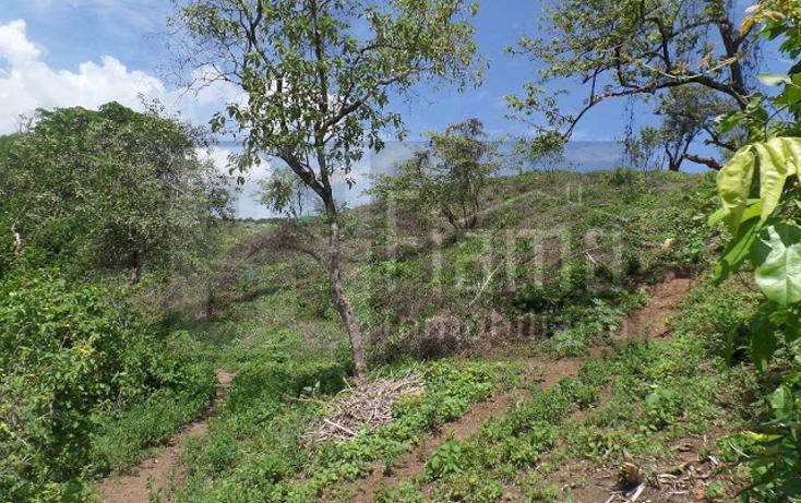 Foto de terreno habitacional en venta en  , el pich?n, tepic, nayarit, 1236859 No. 06