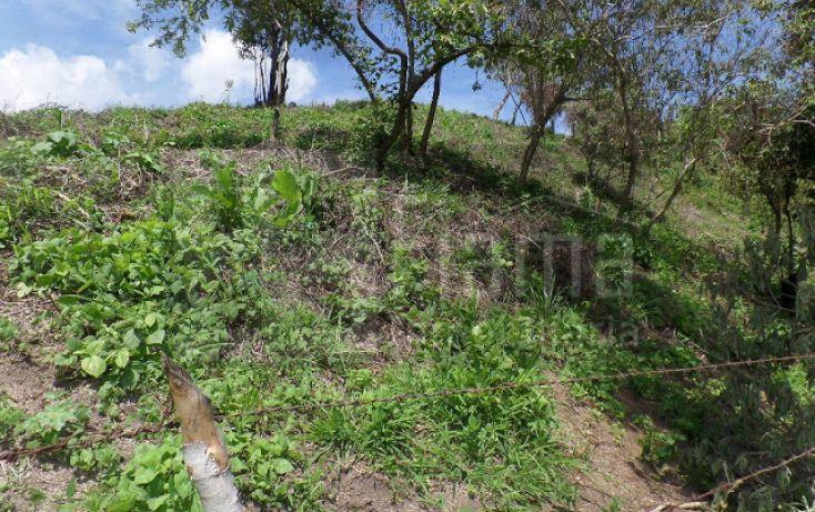 Foto de terreno habitacional en venta en, el pichón, tepic, nayarit, 1236859 no 07