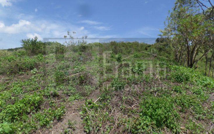 Foto de terreno habitacional en venta en, el pichón, tepic, nayarit, 1236859 no 08