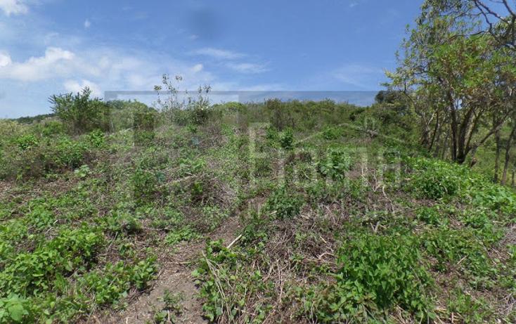 Foto de terreno habitacional en venta en  , el pich?n, tepic, nayarit, 1236859 No. 09