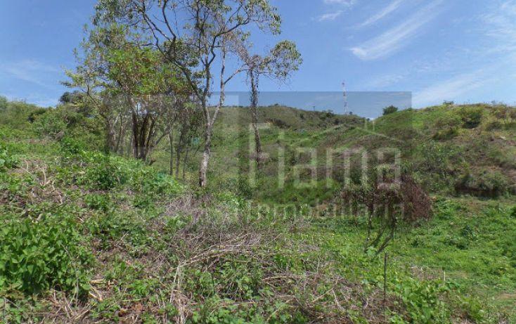 Foto de terreno habitacional en venta en, el pichón, tepic, nayarit, 1236859 no 10