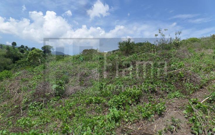 Foto de terreno habitacional en venta en  , el pich?n, tepic, nayarit, 1236859 No. 10
