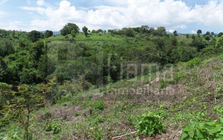 Foto de terreno habitacional en venta en, el pichón, tepic, nayarit, 1236859 no 11