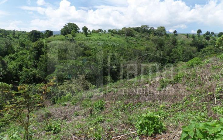 Foto de terreno habitacional en venta en  , el pich?n, tepic, nayarit, 1236859 No. 12
