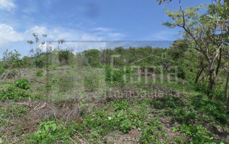 Foto de terreno habitacional en venta en, el pichón, tepic, nayarit, 1236859 no 13